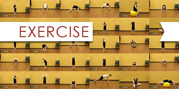 DAM - Exercise ver1