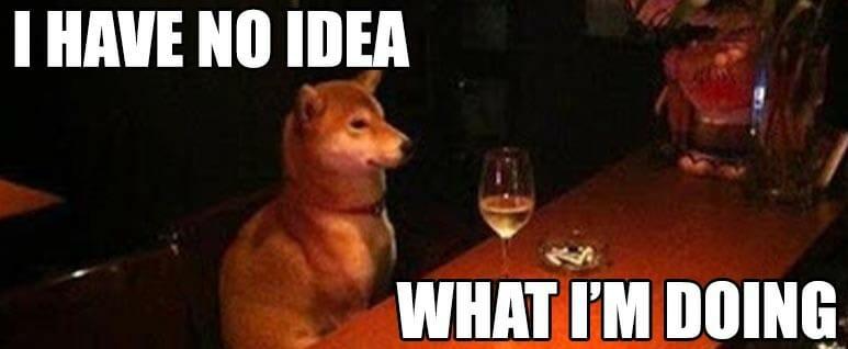 dog at the bar meme